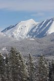 Un Mountain View vertical de paysage de parc d'hiver, le Colorado photo libre de droits