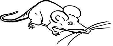 Un mouse comico Fotografia Stock Libera da Diritti