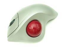 Un mouse della sfera rotante Fotografia Stock Libera da Diritti