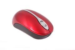 Un mouse wirless del calcolatore Immagine Stock