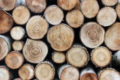 Un mucchio della legna da ardere della betulla Fotografia Stock