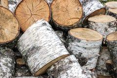 Un mucchio della legna da ardere della betulla Immagine Stock Libera da Diritti