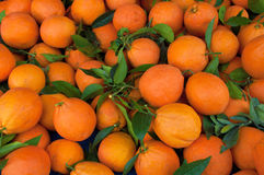 Un mucchio delle arance Fotografie Stock