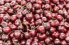 Un mucchio delle ciliege di Lapins fotografie stock