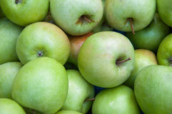 Un mucchio delle mele verdi Fotografia Stock
