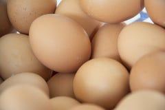 Un mucchio delle uova Fotografia Stock