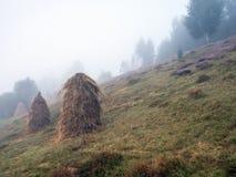 Un mucchio di fieno nei precedenti di bello paesaggio della montagna Immagini Stock
