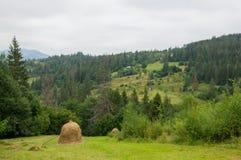 Un mucchio di fieno nelle montagne Fotografia Stock Libera da Diritti