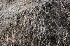 Un mucchio di fieno su un allungamento nel vecchio villaggio Fotografie Stock Libere da Diritti