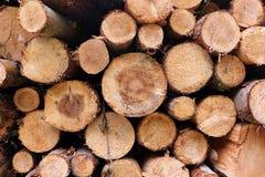 Un mucchio di legname Fotografie Stock