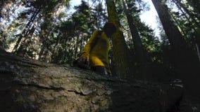 Un muchacha-fotógrafo sano activo del inconformista con una cámara en sus manos camina a través del bosque que está caminando la  metrajes