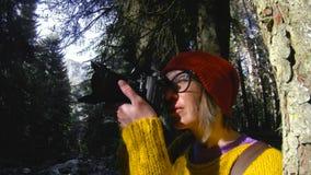 Un muchacha-fotógrafo sano activo del inconformista con una cámara en sus manos camina a través del bosque que la muchacha está t almacen de video