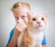 Un muchacho con alergia de gato Foto de archivo