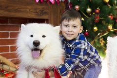 Un muchacho con un perro grande en la Navidad Foto de archivo libre de regalías