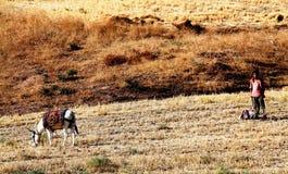Un muchacho con su burro Imagen de archivo libre de regalías