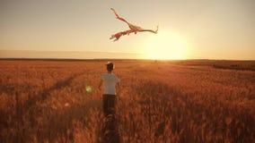 Un muchacho corre a través del campo en la puesta del sol con una cometa que vuela sobre su cabeza Un sueño del chidhood Embroma  almacen de metraje de vídeo