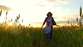 Un muchacho del niño corre con su madre en un campo del trigo de oro, jugando en naturaleza