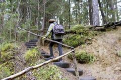 Un muchacho en un bosque verde, subiendo en la colina Foto de archivo