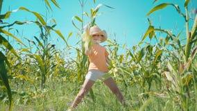 Un muchacho en un sombrero de paja está jugando en un campo de maíz, el niño está sosteniendo mazorcas de maíz y se presenta como metrajes