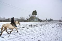 Un muchacho en un caballo en invierno Imágenes de archivo libres de regalías