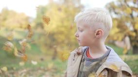 Un muchacho hermoso lanza las hojas de otoño para arriba caidas sobre su cabeza metrajes