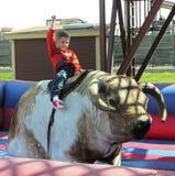 Un muchacho monta una Bull mecánica, corrales de Fort Worth Fotos de archivo libres de regalías