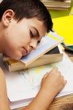Un muchacho perezoso que duerme en el libro Imagen de archivo libre de regalías