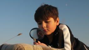 Un muchacho que miente en la naturaleza examina una planta a través de una lupa metrajes