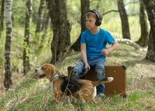 Un muchacho siete años que caminan en el bosque con un beagle Imágenes de archivo libres de regalías
