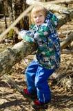 Un muchacho sube en un árbol Fotografía de archivo libre de regalías