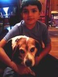 Un muchacho y su perro del beagle Foto de archivo