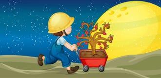Un muchacho y una carretilla con la planta Imagen de archivo libre de regalías