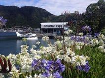 Un muelle con el aeroboat y las flores Imagenes de archivo