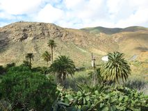 Un mulino a vento americano nella valle di Buen Paso Fotografia Stock Libera da Diritti