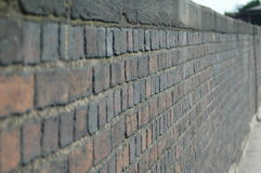 Un mur de briques Images libres de droits