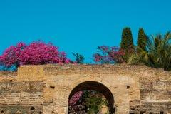 Un mur de briques antique avec un passage entouré par des buissons et des arbres image libre de droits