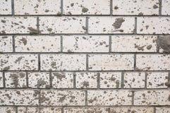 Un mur de la brique blanche éclaboussé avec la boue photo libre de droits
