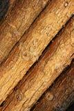 Un mur de tronc en vallée de Longtan à Luoyang Images stock