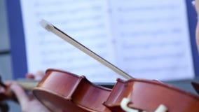 Un musicien joue le violon banque de vidéos