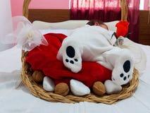 Un neonato anziano da cinque giorni che dorme nel canestro Fotografie Stock