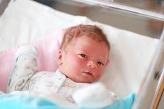 Un neonato del giorno scorso Immagini Stock Libere da Diritti