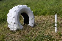 Un neumático con eje trasero blanqueado grande del tractor y una participación de madera usados como marcador en un campo de gran foto de archivo libre de regalías