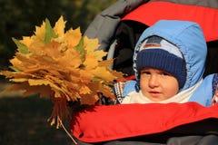 Un niño con follaje de caída. Fotos de archivo libres de regalías