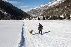 Un niño con las raquetas y los polos rojos y un perro que camina en una nieve Imágenes de archivo libres de regalías