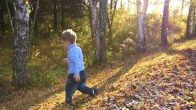 Un niño corre y juega en el parque del otoño El muchacho está riendo, él le gusta correr en las hojas amarillas almacen de video