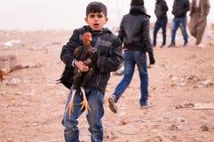 Un niño de Mosul que huye de la lucha con su animal Fotografía de archivo libre de regalías