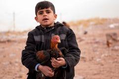 Un niño de Mosul que huye de la lucha con su animal Imagen de archivo