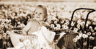 Un niño dentro del cochecito de niño en prado con los dientes de león Imagen de archivo libre de regalías