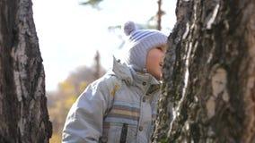 Un niño en el parque del otoño camina en el aire fresco Un lugar escénico hermoso almacen de video