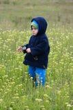 Un niño en prado florido. Foto de archivo